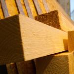 Boulderwand bauen – Moonboard